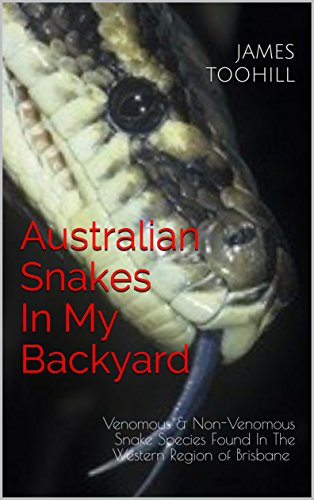 Australian Snakes In My Backyard: Venomous & Non-Venomous Snake Species Found In The Western Region of Brisbane (Brille English)