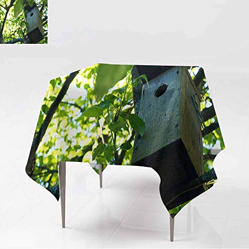 - AFGG Spill-Proof Table Cover,Birdhouse in Garden Outdoors,Dinner Picnic Table Cloth Home Decoration,36x36 Inch