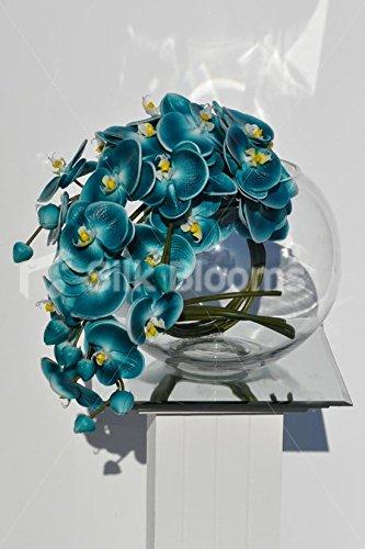 Atractivo azul oscuro Fresh Touch orquídea Phalaenopsis arreglo Floral en pecera jarrón