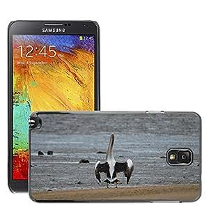Cas Coq Case Cover // M00146837 Pájaro Pelícano Agua Aves Animales // Samsung Galaxy Note 3 III N9000 N9002 N9005
