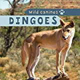 img - for Dingoes (Wild Canines) book / textbook / text book