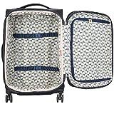 DELSEY Paris Montrouge Softside Expandable Luggage