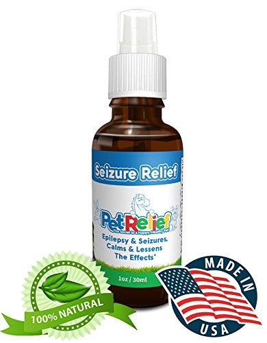 Natural Seizure Medication For Dogs