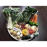 野菜セット 千葉・茨城県 農家さん直送野菜 新鮮採れたて! 送料無料