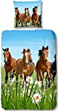 Aminata Kids - liebevolle Mädchen-Kinder-Bettwäsche 135x200 Pferde-Motiv mit Herz hochwertige Baumwolle Pferde-Bettwäsche-Kinder auf der Wiese