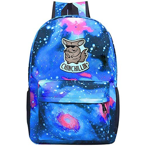 - Chinchilling Galaxy Backpack, YYFESX Student Stylish School Bag Oxford Fabric Laptop Daypack for Teen Boys and Girls