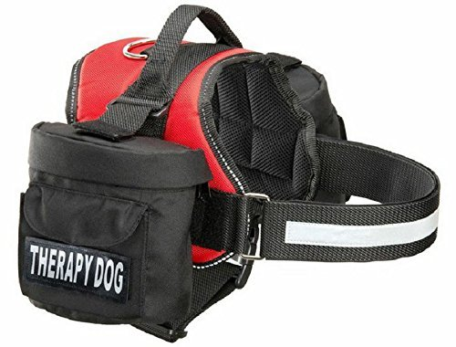 Doggie Stylz Removable Traveling Ordering
