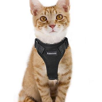 Amazon.com: Arnés para gatos a prueba de caídas, arnés de ...