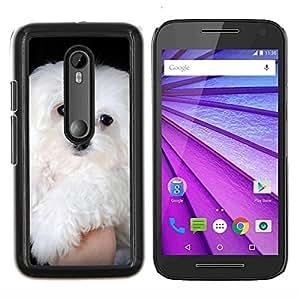 Caucho caso de Shell duro de la cubierta de accesorios de protecci¨®n BY RAYDREAMMM - Motorola MOTO G3 3rd Gen - Malt¨¦s peque?o perro blanco de pelo largo