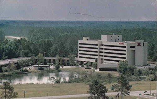 - Jacksonville Airport Hilton Jacksonville, Florida Original Vintage Postcard