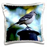 WhiteOaks Photography and Artwork - Birds - Morning Watch is a photo of a bird on a pole - 16x16 inch Pillow Case