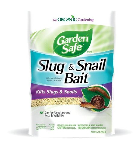 Garden Safe HG-4536 Slug Bait, Case Pack of 6