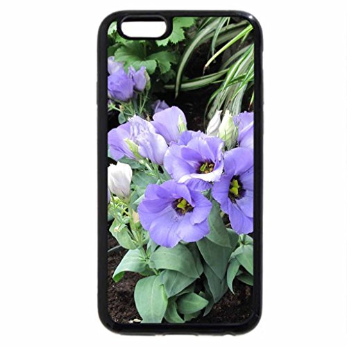 iPhone 6S Case, iPhone 6 Case (Black & White) - The pyramids display gardens 03