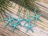 Metallic Turquoise Finger Starfish Christmas Tree Ornaments, Set of 6