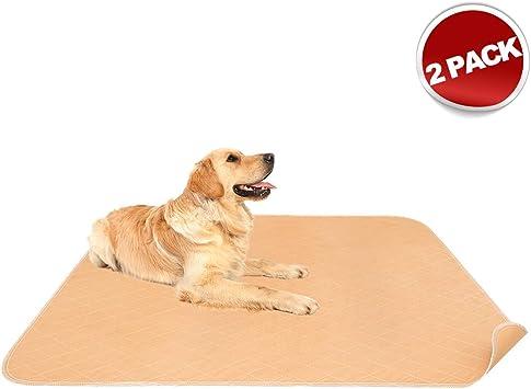 Amazon.com: Mascota Pee Pad Paquete de 2 – 41