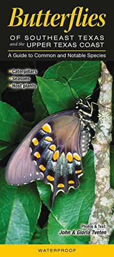 Butterflies of Southeast Texas & the Upper Texas Coast: A Guide to Common & Notable Species (Quick Reference Guides)