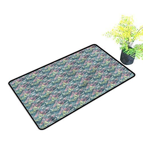 Door mat Butterfly,Pastel Grunge Spring Machine Washable,H17xW29 inch]()
