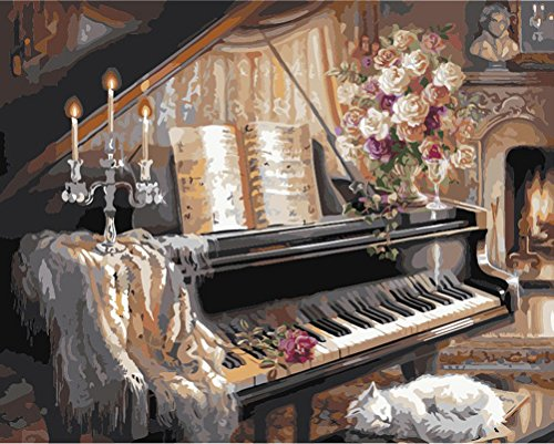 New Arrivals DIY Digital Oil Painting Paint by Numbers Kit Modern Wall Art Home Decoration Picture without Framed - Piano and Sleep Cat Sleep Framed