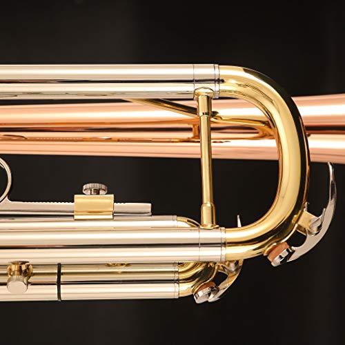 Kaizer C-Series (4000) Intermediate Trumpet B Flat Bb New 2019 Model