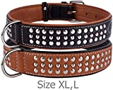 "CollarDirect Handmade Studded Dog Collar, Genuine Leather Collar for Dogs, Soft Padded Leather Puppy Collar Brown Black Small Medium (Brown, Neck fit 20"" - 22"")"
