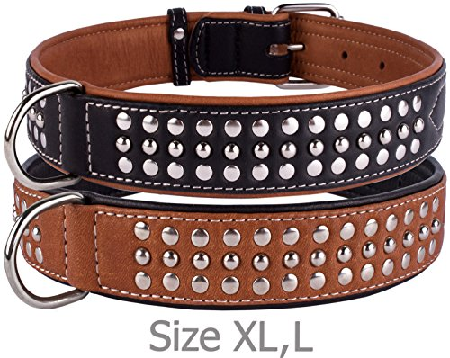 "CollarDirect Studded Dog Collar Leather Pet Collars for Dogs Small Medium Large Puppy Soft Padded Brown Black (Black, Neck fit 20"" - 22"")"