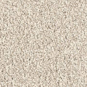 Koeckritz 2 x3 Graham Cracker Area Rug Carpet. Multiple Sizes, Shapes
