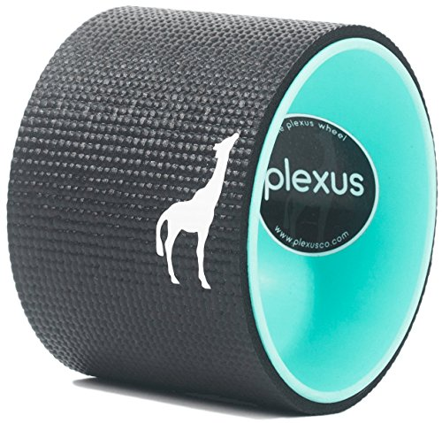 Plexus Wheel 6 Inch - Back Stretch Roller & Back Wheel For Yoga - Great for Classes Or In-Home Use - Optimal Back Roller Yoga Wheel For Back Pain Relief - USA Made