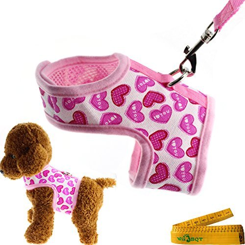 Teacup Clothes Dress Dog (Wiz BBQT Bright Mesh Heart Printed Dog Cat Pet Vest Harness and Matching Leash Set in Pink for Tiny Newborn Dogs Cats ((7.9