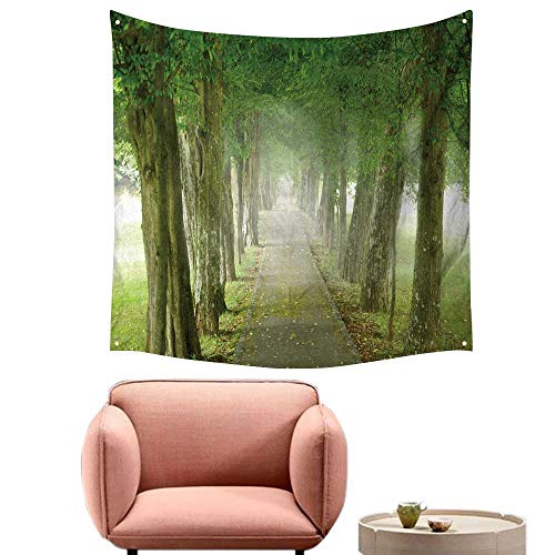 (alsohome Bedroom Tapestry Tapestry Wall Hanging for Bedroomfootpath Through The Misty Promenade 55