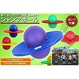 【 遊びで身につくバランス感覚 】 ポンプ付き アウトドア 運動 子供 遊具 ジャンプボール バランスボール