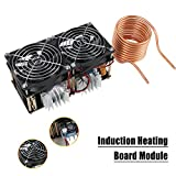 40A 1800W ZVS Low Voltage Induction Heating Board Module Flyback Driver...