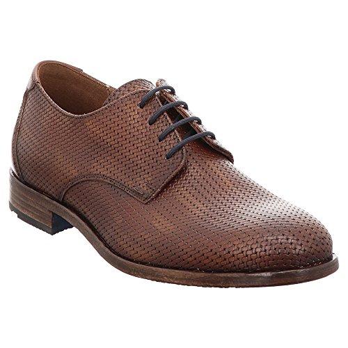 à lacets Marron pour de 33 075 ville LLOYD 18 Chaussures Jamal homme qf8w00xP