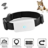 TKSTAR Mini Dog GPS Tracker Support WiFi Cat Dog Anti Lost Finders Waterproof Activity Training Realtime Location GSM FREE APP and PC Tracking for iPhone Android (TK911 GPS + Wifi Pet Tracker)