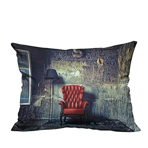 Pillowcase with Zipper Luxury Armchair Floor Lamp in Interior Damaged Messy Abandoned House Windows Cushion Cotton and Linen19.5x26 inch(Double-Sided Printing)