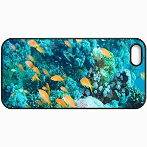 Customized Cellphone Case Back Cover For iPhone 5 5S, Protective Hardshell Case Personalized Underwater Aquarium Reef Black