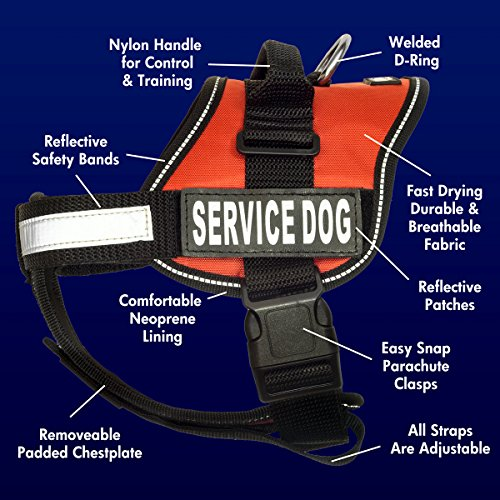 barkOutfitters Service Dog Vest Harness + 50 ADA Info Cards Kit (Red, XS (14'' - 17'' Girth) ) by barkOutfitters (Image #1)