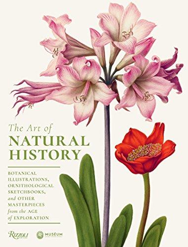 The Art of Natural History: Botanical