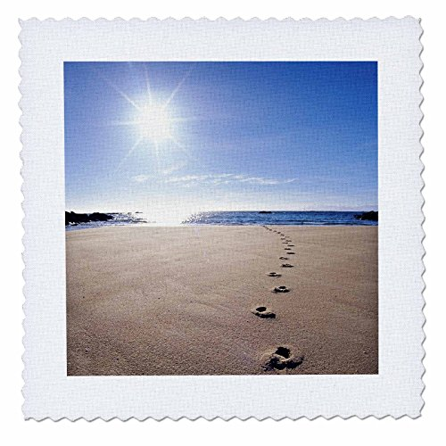 3dRose qs_72204_1 Footprints in Sand, ABEL Tasman National Park-AU01 DWA2064-David Wall-Quilt Square, 10 by 10-Inch