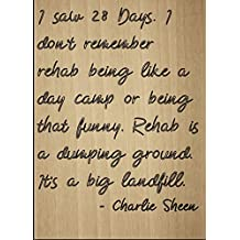 """I saw 28 Days. I don't remember rehab..."" quote by Charlie Sheen, laser engraved on wooden plaque - Size: 8""x10"""