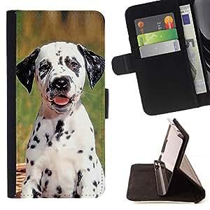 Momo Phone Case / Flip Funda de Cuero Case Cover - Cachorro dálmata Spots perro de mascota; - LG Nexus 5 D820 D821