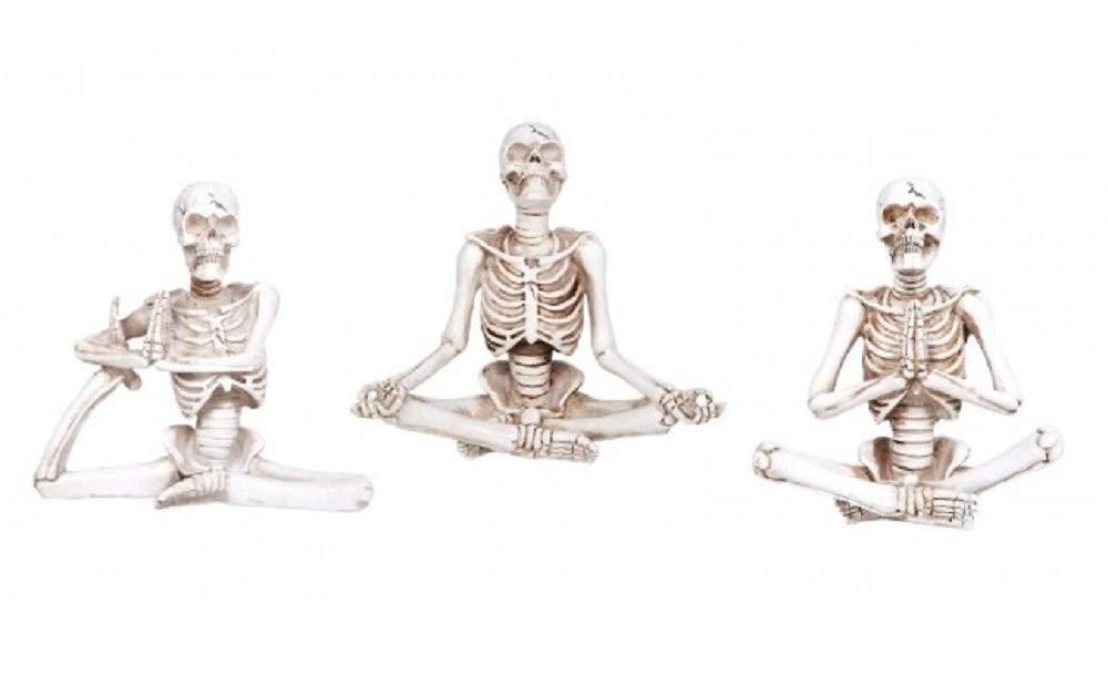 Special T Imports - Juego de 3 Figuras de Esqueletos de Yoga ...