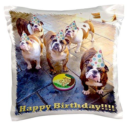 "3dRose pc_39567_1 English Bulldog Birthday - Pillow Case, 16 by 16"""