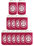 21st Birthday Gift Celebrating 21 Years 12 Pack Can Coolies Drink Coolers Mag...