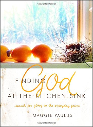 Download Finding God at the Kitchen Sink: Search for Glory in the Everyday Grime pdf