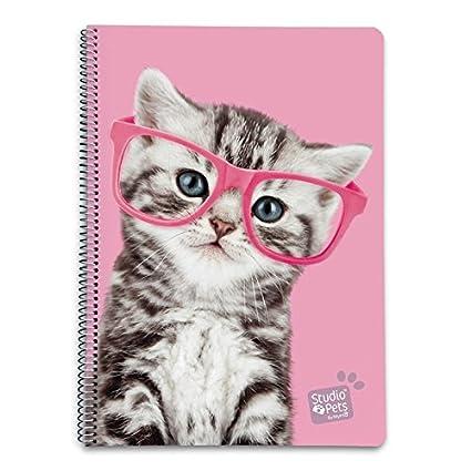 Grupo Erik Editores Studio Pets - Cuaderno con tapa dura con ...
