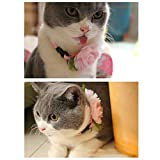 BUYITNOW Cute Flower Cat Collar Breakaway Pet Velet Neck Bow Tie for Party Wedding