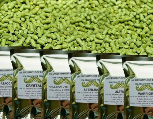 5-9/% AA 2018 100g of Northern Brewer Hop Pellets Cold Stored CO2 Flushed for Freshness