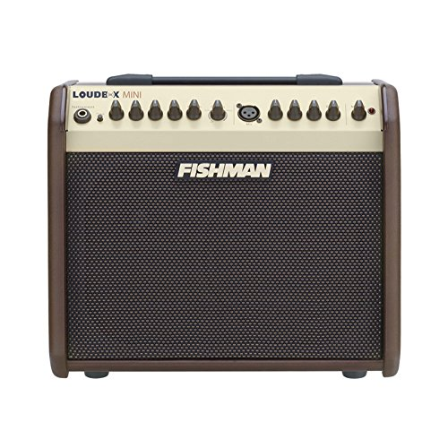 - Fishman Loudbox Mini 60W Acoustic Instrument Amplifier