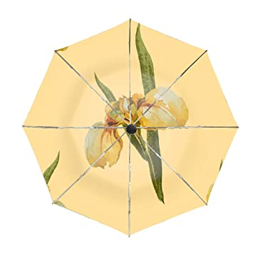 Amazon Com Travel Umbrella Windproof Folding Umbrella Auto Open