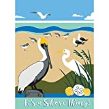 Cheap It's A Shore Thing Pelicans Beachy Blues 13 x 18 Rectangular Small Garden Flag